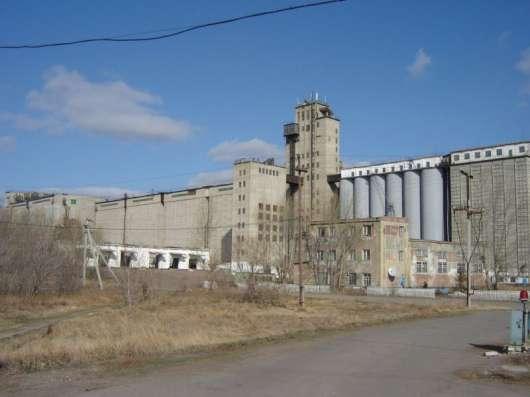 Продажа пшеничной муки от Высшего до первого сорта