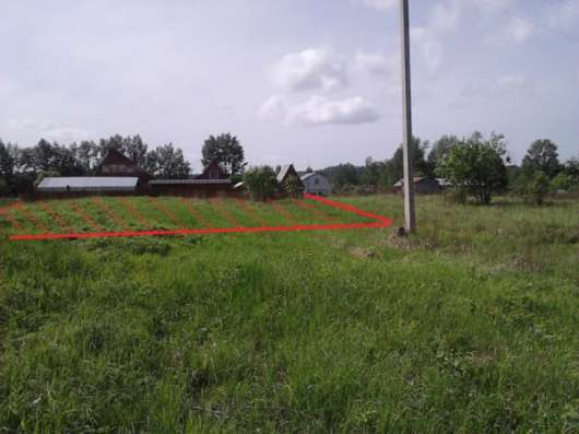 Участок 15 соток в деревне Буриново 99 км от МКАД
