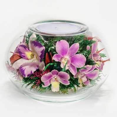 Орхидеи фиолетовые светлые в Москве Фото 5