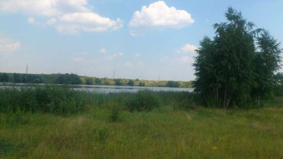 Участок на берегу р. Матыра, рядом с хвойным лесом с.Казинка