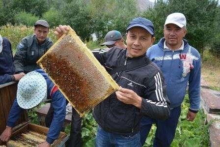"""Обучение, бизнес курс """"Пчеловодство"""" в г. Бишкек Фото 1"""