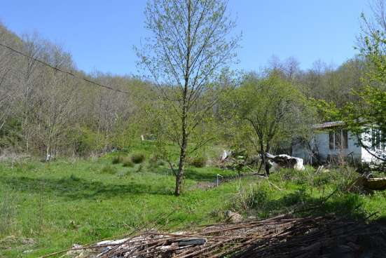 Новый дом- рядом лесочек с грибами и пруд
