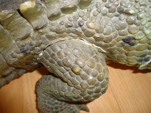 Крокодил в интерьер