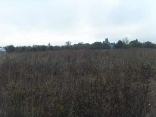 Продается земельный участок 17,5 соток в д. Гавшино (ЛПХ) Можайский район, 100 км от МКАД по Минскому шоссе Фото 3