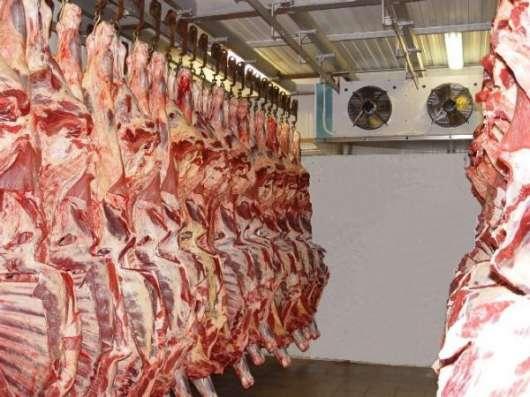 Холодильные камеры для заморозки и хранения мяса в Крыму.