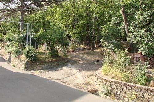 Продается участок возле Ялты в Ливадии по ул. Лесной.