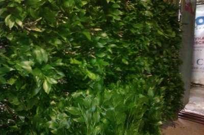 Рускус дешевле цены Краснодарского опта в Набережных Челнах Фото 6