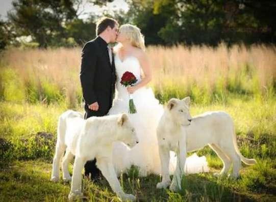 Свадебная церемония за границей. Отдых для молодоженов