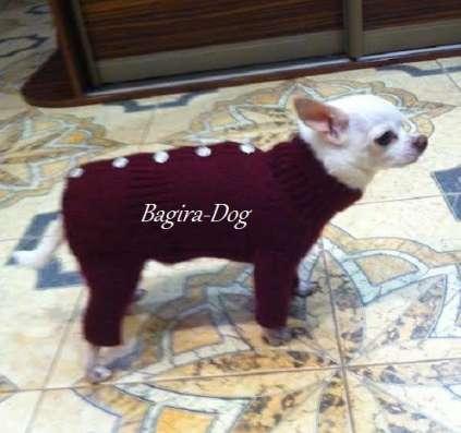 Вязаная одежда для собак в Москве Фото 1