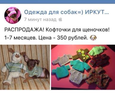 Одежда той-терьер собака щенок в Иркутске Фото 2