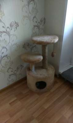 Продам домик для кошки с когтеточкой за 1300 руб