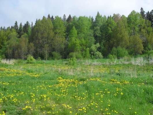 Участок в п. Овсово в г. Выборг Фото 3