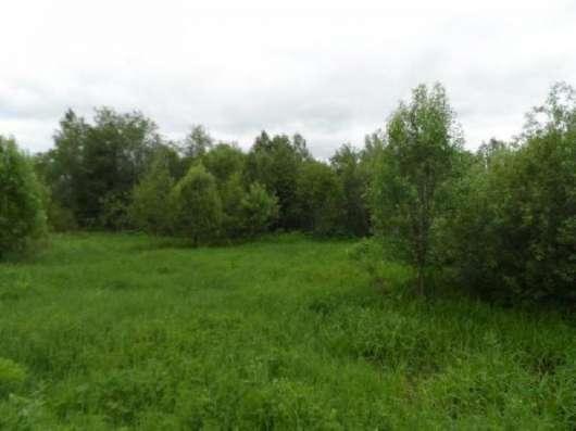 Продается земельный участок 14 соток под личное подсобное хозяйство в дер. улино Можайский р-он 108 км от МКАД по Минскому шоссе. Фото 2
