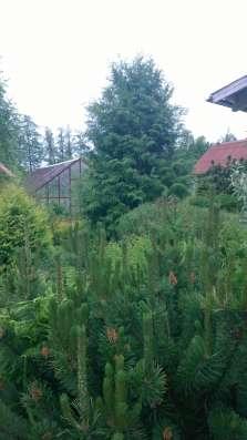 Дом 160 кв. м. в Чулково в г. Выборг Фото 2