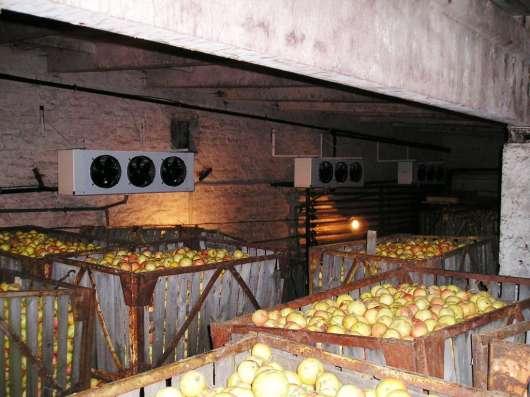 Овощехранилище под ключ в Крыму. Хорошие цены. Сервис