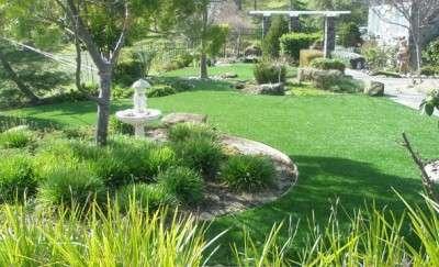 Травосмеси для загородного и коттеджного озеленения