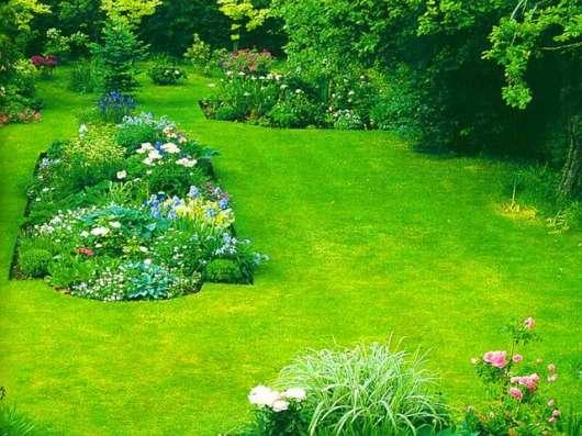 Оказываю услуги садовника опыт работы 15 лет в г. Алматы Фото 4