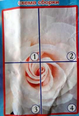 Фото-обои Роза Невеста 141 см на 97 см в г. Харьков Фото 1