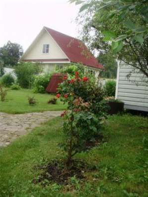 Продается дом в дер. Волосково (Юрловский с/о),Можайский район, 130 км от МКАД по Минскому шоссе. Фото 2